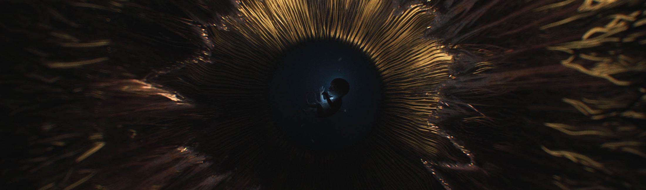 ashthorp-image-01